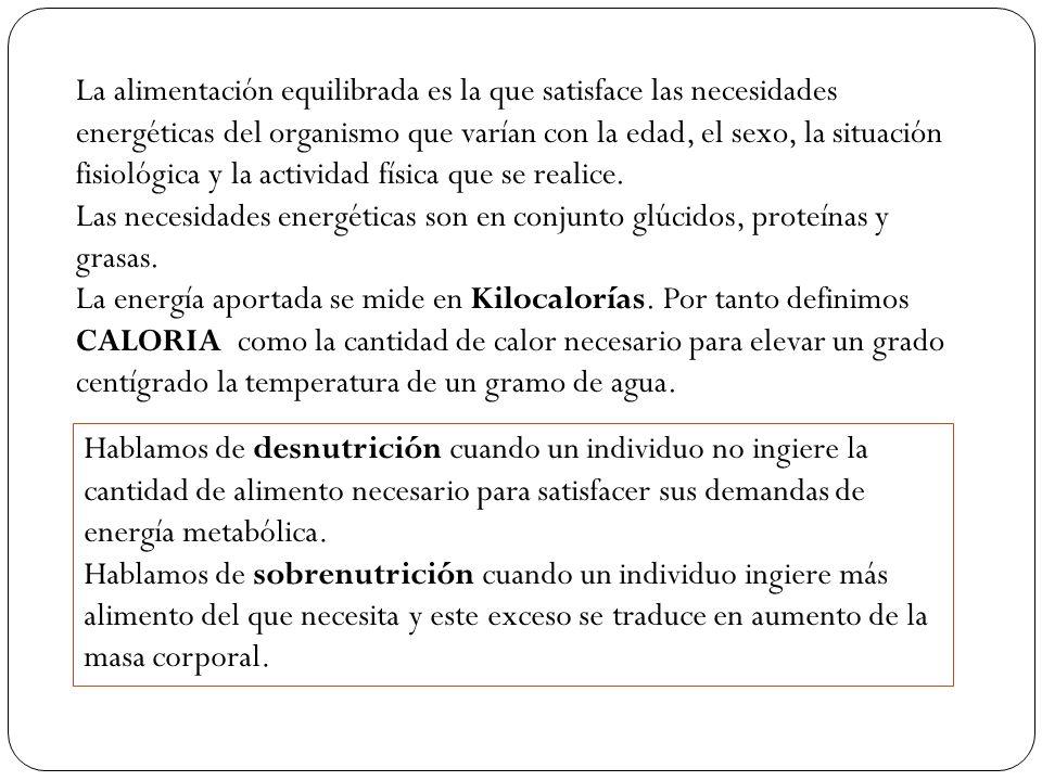 CLASIFICACIÓN DE LOS ALIMENTOS: Alimentos energéticos: son aquellos ricos en glúcidos y lípidos.