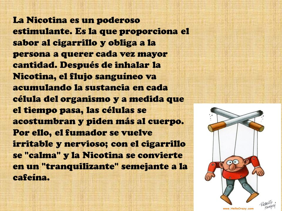 La Nicotina es un poderoso estimulante. Es la que proporciona el sabor al cigarrillo y obliga a la persona a querer cada vez mayor cantidad. Después d