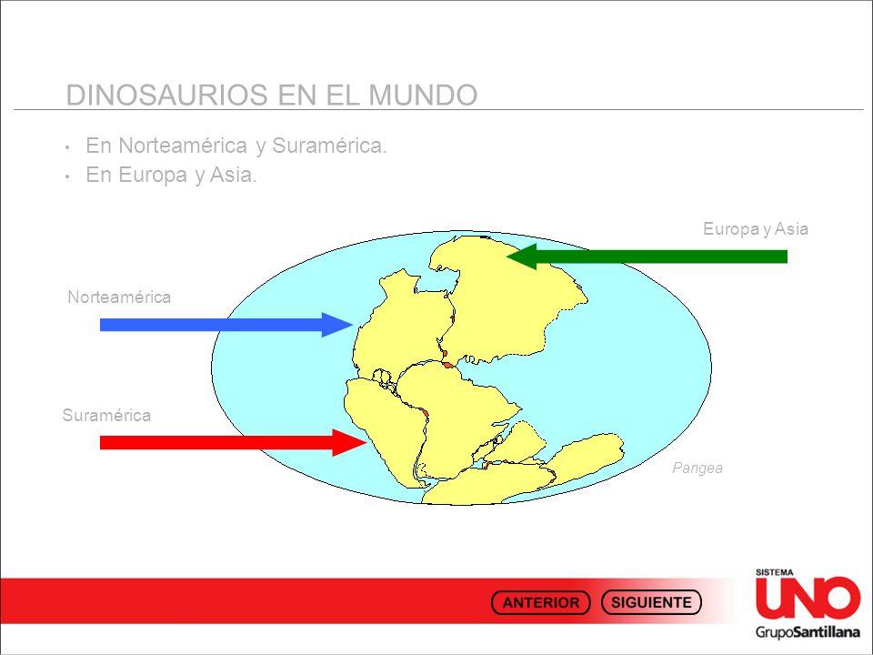 En Norteamérica y Suramérica. En Europa y Asia. DINOSAURIOS EN EL MUNDO Pangea Norteamérica Suramérica Europa y Asia