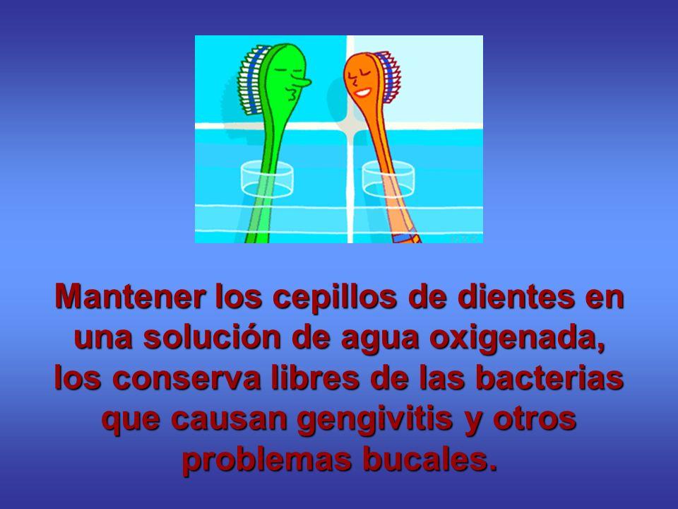 Mantener los cepillos de dientes en una solución de agua oxigenada, los conserva libres de las bacterias que causan gengivitis y otros problemas bucal