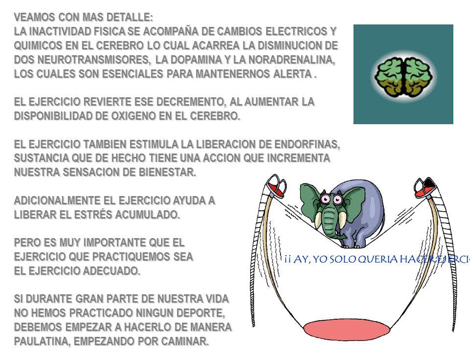 VEAMOS CON MAS DETALLE: LA INACTIVIDAD FISICA SE ACOMPAÑA DE CAMBIOS ELECTRICOS Y QUIMICOS EN EL CEREBRO LO CUAL ACARREA LA DISMINUCION DE DOS NEUROTR
