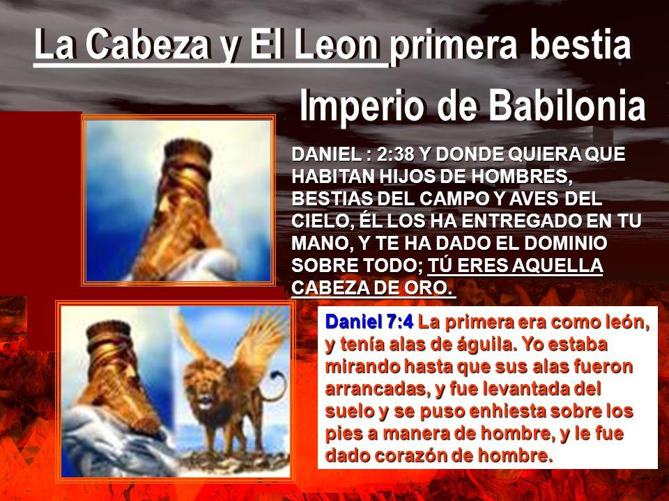 DANIEL : 2:38 Y DONDE QUIERA QUE HABITAN HIJOS DE HOMBRES, BESTIAS DEL CAMPO Y AVES DEL CIELO, ÉL LOS HA ENTREGADO EN TU MANO, Y TE HA DADO EL DOMINIO