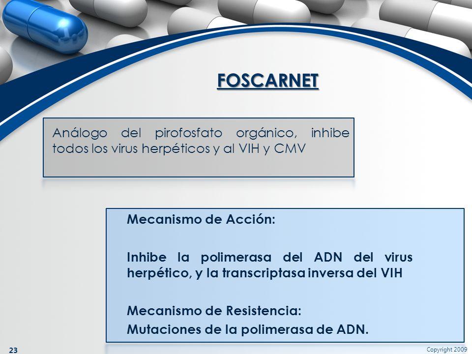 Copyright 2009 23 Análogo del pirofosfato orgánico, inhibe todos los virus herpéticos y al VIH y CMV FOSCARNET Mecanismo de Acción: Inhibe la polimera