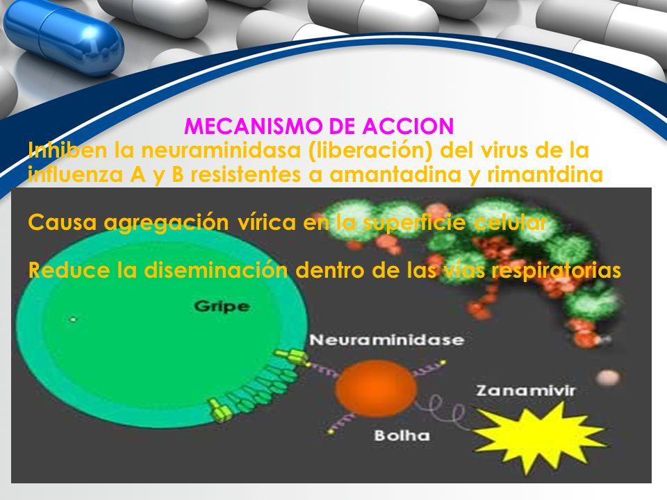 MECANISMO DE ACCION Inhiben la neuraminidasa (liberación) del virus de la influenza A y B resistentes a amantadina y rimantdina Causa agregación víric