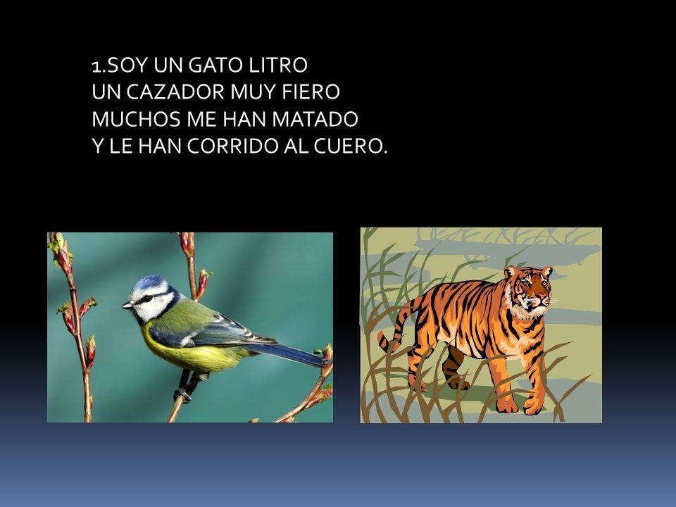 1.SOY UN GATO LITRO UN CAZADOR MUY FIERO MUCHOS ME HAN MATADO Y LE HAN CORRIDO AL CUERO.