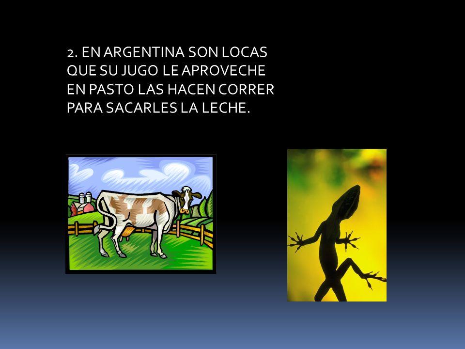 9.LA HEMBRA ES LA QUE CASA PA ESTO SON GENIALES FAMOSO POR SU MELENA EL REY DE LOS ANIMALES.