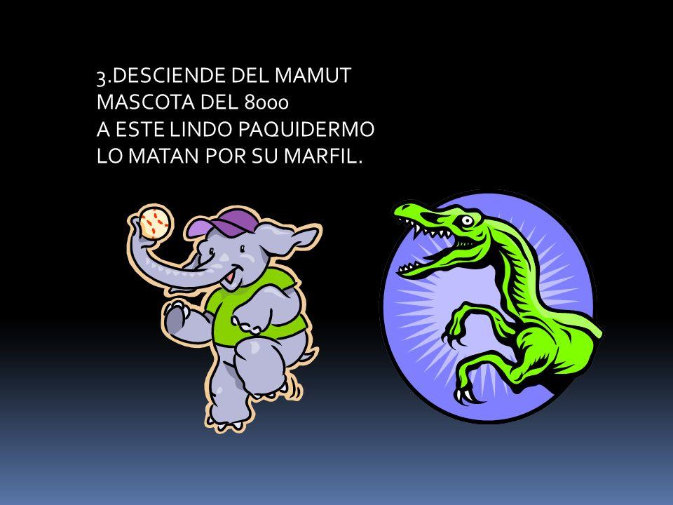 3.DESCIENDE DEL MAMUT MASCOTA DEL 8000 A ESTE LINDO PAQUIDERMO LO MATAN POR SU MARFIL.