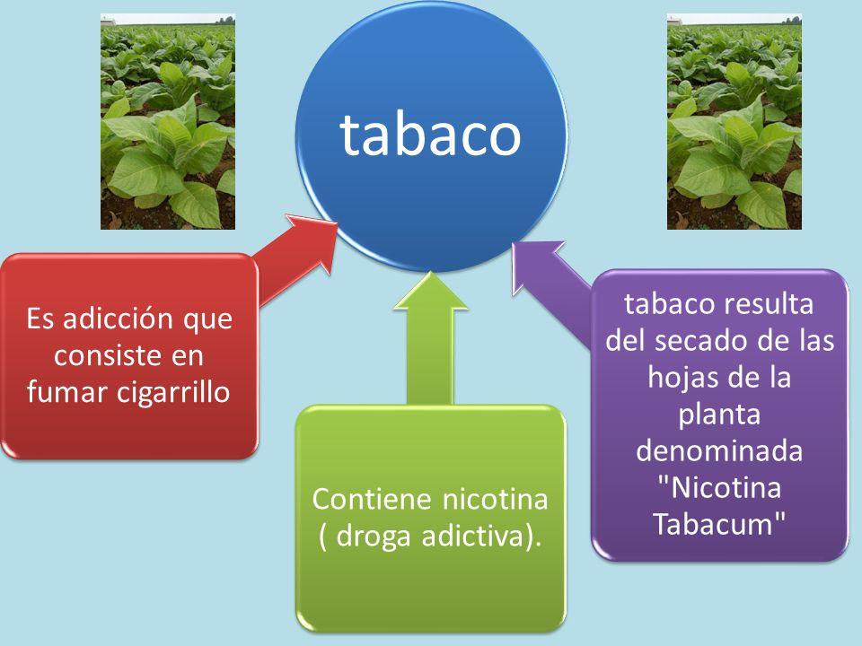 tabaco Es adicción que consiste en fumar cigarrillo Contiene nicotina ( droga adictiva). tabaco resulta del secado de las hojas de la planta denominad