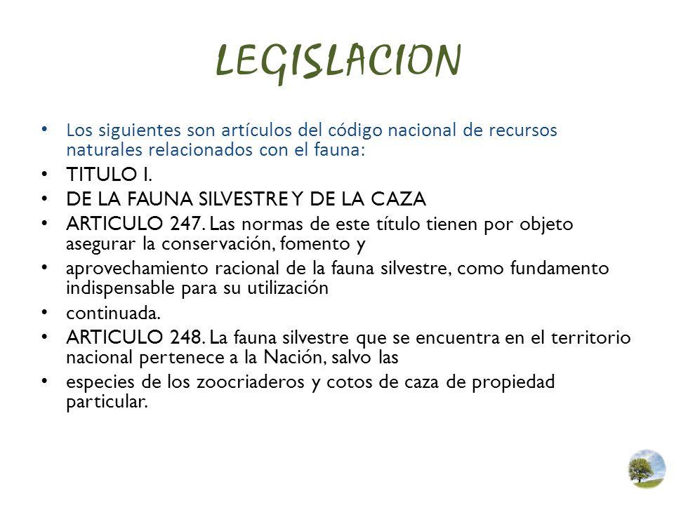 LEGISLACION Los siguientes son artículos del código nacional de recursos naturales relacionados con el fauna: TITULO I. DE LA FAUNA SILVESTRE Y DE LA