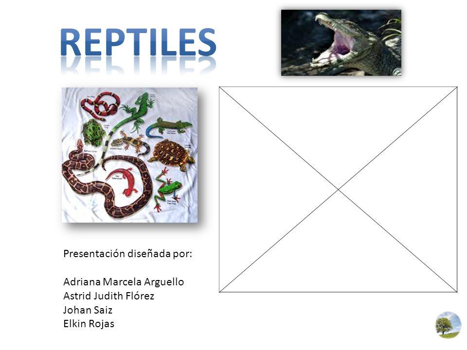 Presentación diseñada por: Adriana Marcela Arguello Astrid Judith Flórez Johan Saiz Elkin Rojas