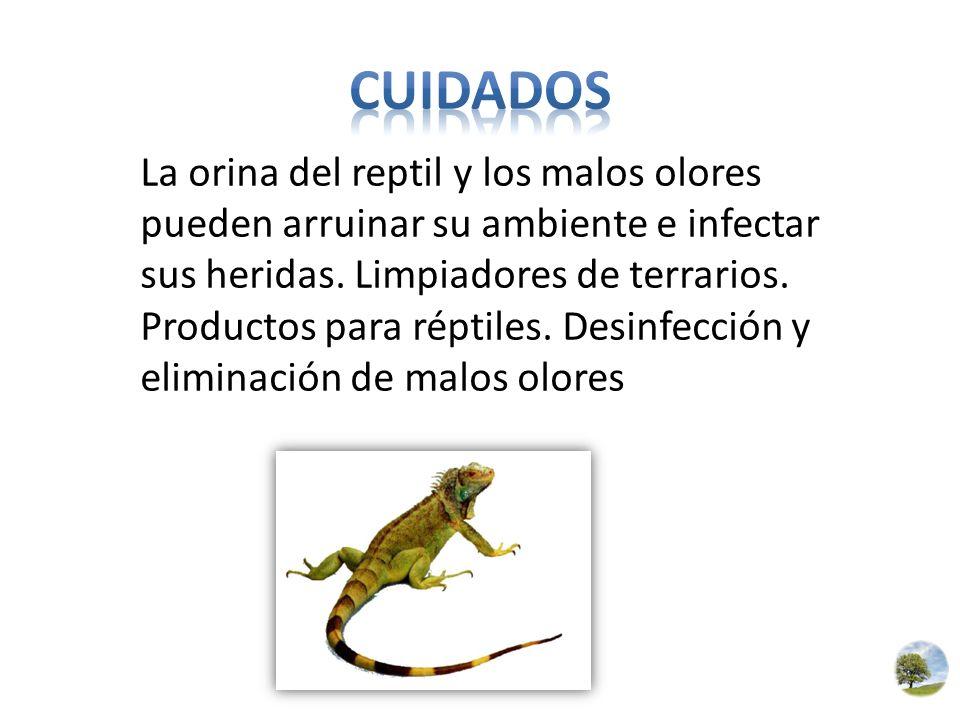 La orina del reptil y los malos olores pueden arruinar su ambiente e infectar sus heridas. Limpiadores de terrarios. Productos para réptiles. Desinfec
