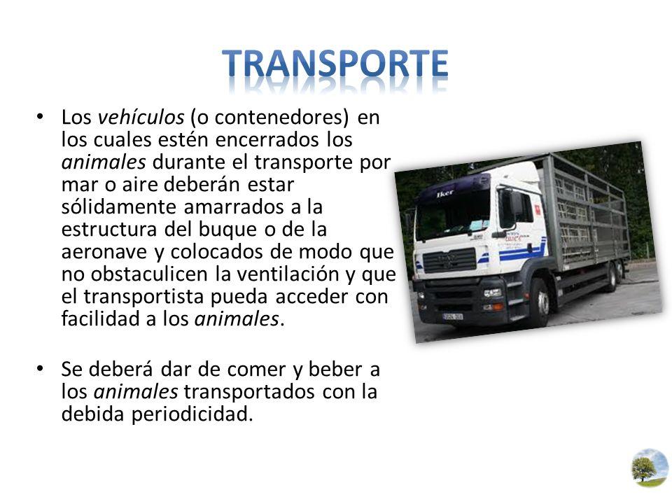 Los vehículos (o contenedores) en los cuales estén encerrados los animales durante el transporte por mar o aire deberán estar sólidamente amarrados a
