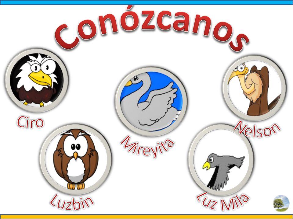 Generalidades El Orden Carnívora comprende unas 231 especies, incluidas en las 7 familias en que se divide este grupo.
