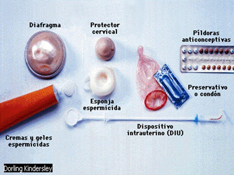 1-Métodos Naturales Métodos basados en el conocimiento de la fertilidad de la mujer Evitar voluntariamente el coito durante la fase fértil del ciclo menstrual.