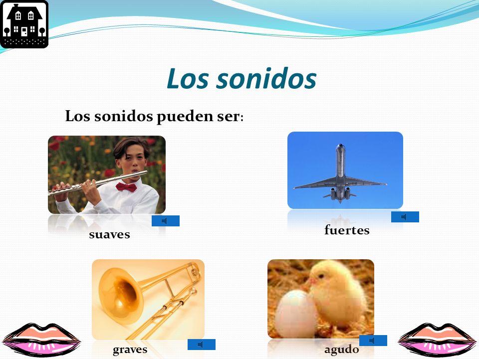 Partes del oído Canal auditivo Oído externo Tímpano Oído interno