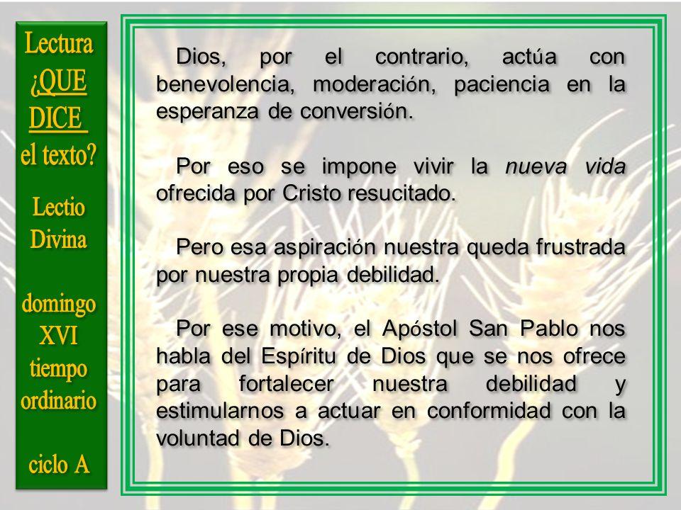 Dios, por el contrario, act ú a con benevolencia, moderaci ó n, paciencia en la esperanza de conversi ó n. Por eso se impone vivir la nueva vida ofrec