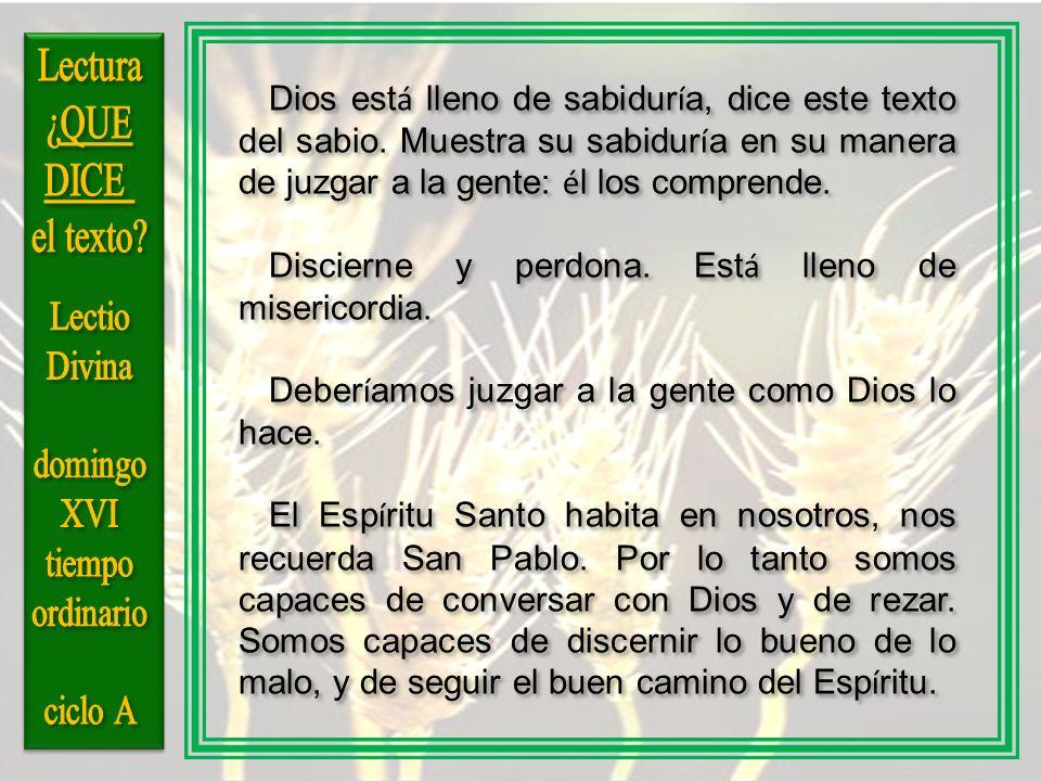 Dios est á lleno de sabidur í a, dice este texto del sabio. Muestra su sabidur í a en su manera de juzgar a la gente: é l los comprende. Discierne y p