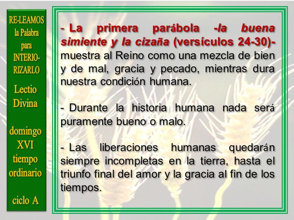 -La primera par á bola -la buena simiente y la ciza ñ a (versículos 24-30)- -La primera par á bola -la buena simiente y la ciza ñ a (versículos 24-30)