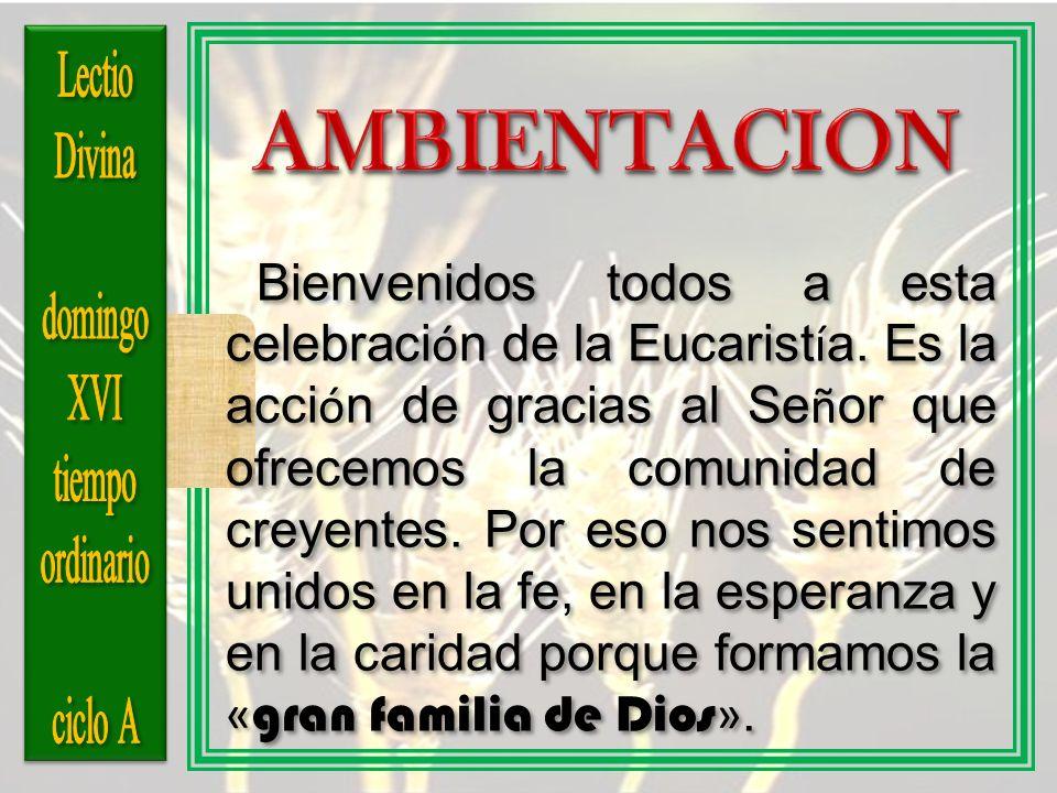 Bienvenidos todos a esta celebraci ó n de la Eucarist í a. Es la acci ó n de gracias al Se ñ or que ofrecemos la comunidad de creyentes. Por eso nos s