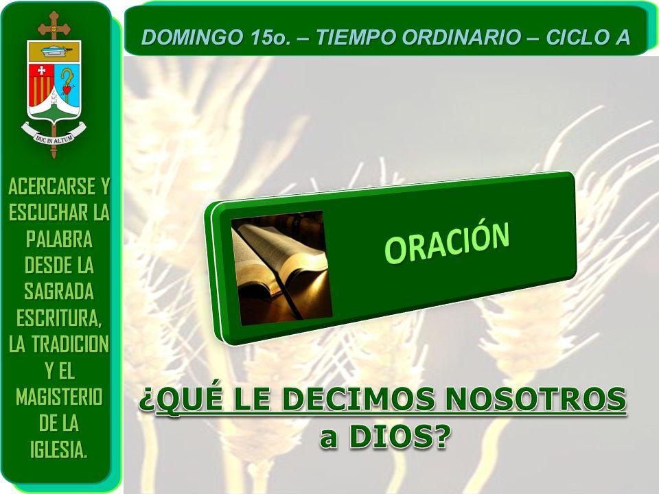 ACERCARSE Y ESCUCHAR LA PALABRA DESDE LA SAGRADA ESCRITURA, LA TRADICION Y EL MAGISTERIO DE LA IGLESIA. DOMINGO 15o. – TIEMPO ORDINARIO – CICLO A