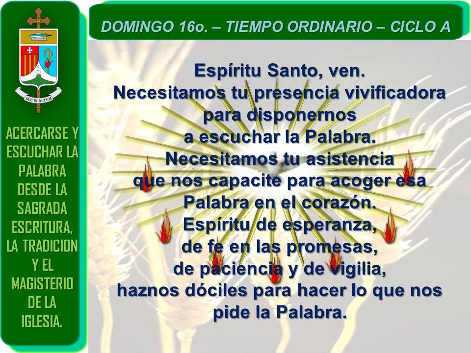 ACERCARSE Y ESCUCHAR LA PALABRA DESDE LA SAGRADA ESCRITURA, LA TRADICION Y EL MAGISTERIO DE LA IGLESIA. DOMINGO 16o. – TIEMPO ORDINARIO – CICLO A Espí