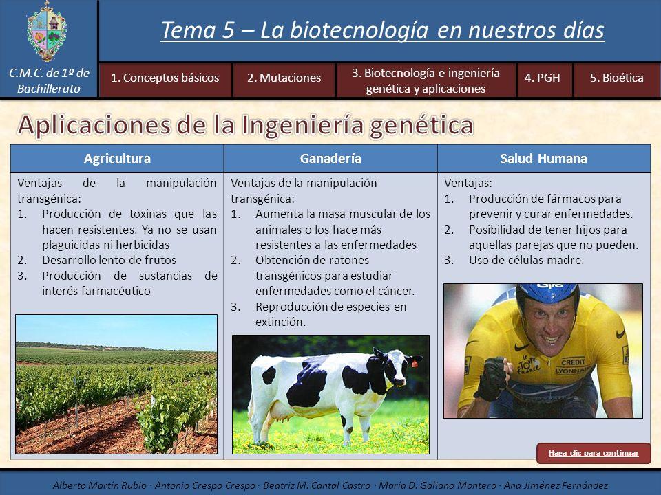 AgriculturaGanaderíaSalud Humana Ventajas de la manipulación transgénica: 1.Producción de toxinas que las hacen resistentes. Ya no se usan plaguicidas