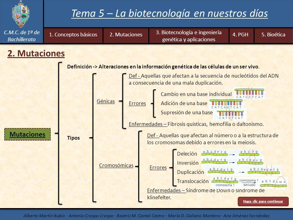 C.M.C. de 1º de Bachillerato Alberto Martín Rubio · Antonio Crespo Crespo · Beatriz M. Cantal Castro · María D. Galiano Montero · Ana Jiménez Fernánde
