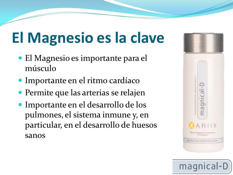 Importancia del Magnesio: Mantener una relación de 1:1 de calcio a magnesio 80% de las personas tienen deficiencia de magnesio, razón por la cual aumenta el riesgo de osteoporosis Necesario para constituir el nuevo hueso Activa la vitamina D en su forma más poderosa Proporción de 1:1 con el calcio para obtener mejores resultados