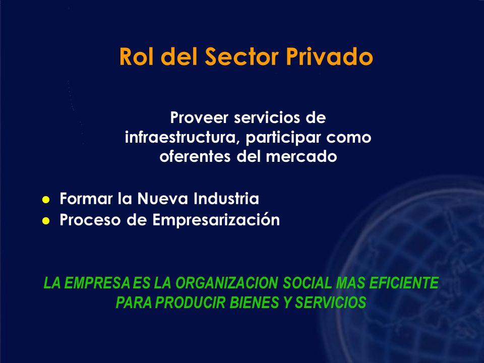 Subsidiariedad Concurrir donde los privados no participan por falta de rentabilidad l Subsidios a la oferta l Proveer directamente el servicio