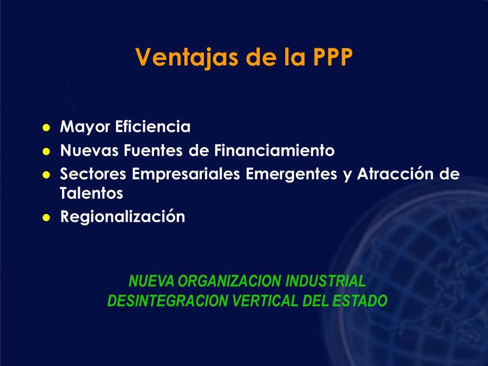 Rol del Sector Privado l Formar la Nueva Industria l Proceso de Empresarización LA EMPRESA ES LA ORGANIZACION SOCIAL MAS EFICIENTE PARA PRODUCIR BIENE