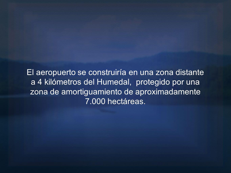 El aeropuerto se construiría en una zona distante a 4 kilómetros del Humedal, protegido por una zona de amortiguamiento de aproximadamente 7.000 hectá