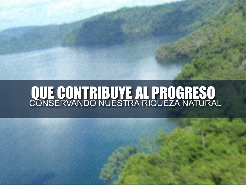 CONSERVANDO NUESTRA RIQUEZA NATURAL CONSERVANDO NUESTRA RIQUEZA NATURAL QUE CONTRIBUYE AL PROGRESO QUE CONTRIBUYE AL PROGRESO