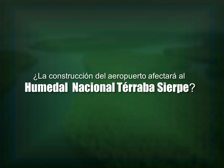 ¿La construcción del aeropuerto afectará al Humedal Nacional Térraba Sierpe ? ¿La construcción del aeropuerto afectará al Humedal Nacional Térraba Sie