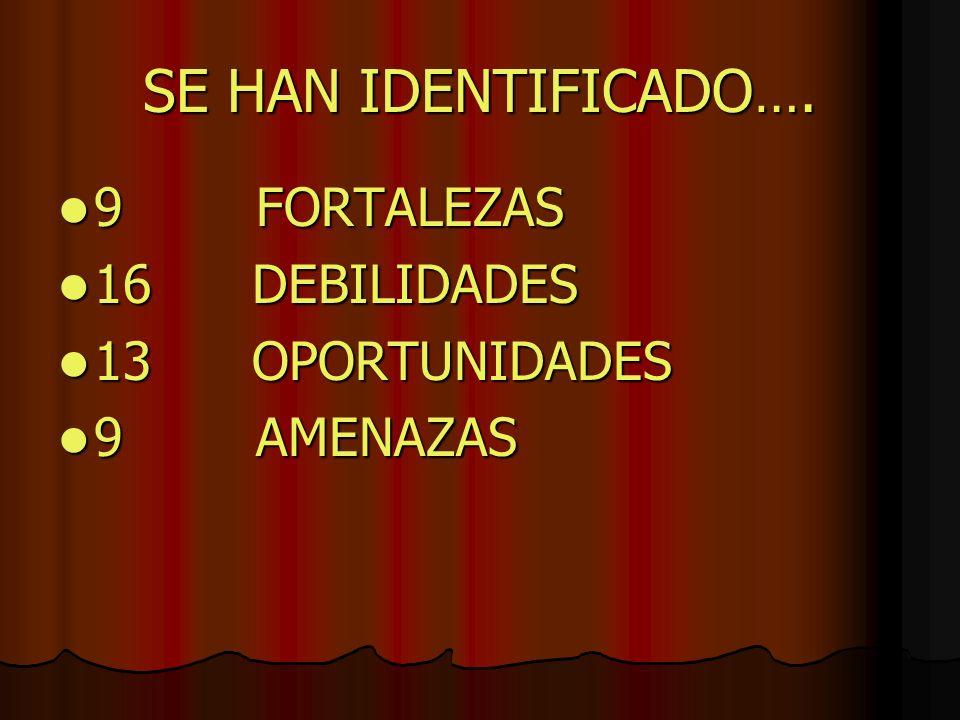 SE HAN IDENTIFICADO …. 9 FORTALEZAS 9 FORTALEZAS 16 DEBILIDADES 16 DEBILIDADES 13 OPORTUNIDADES 13 OPORTUNIDADES 9 AMENAZAS 9 AMENAZAS