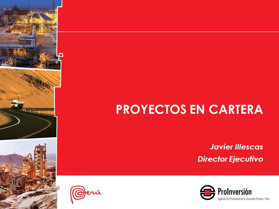 PROYECTOS EN CARTERA Javier Illescas Director Ejecutivo