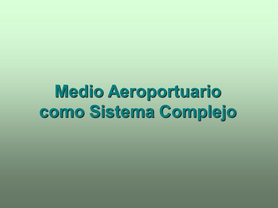 MEDIO AEROPORTUARIO LOCALIZACIÓN GEOGRAFÍA HISTORIA ECONOMÍA UBICACIÓN GEOLOGÍA Y GEOTÉCNIA HIDROLOGÍA RED DE COMUNICACIONES METEOROLOGÍA ENTORNO SISTEMA CAMPO DE VUELO PISTA DE VUELO CALLES DE RODAJE APARTADEROS DE ESPERA PLATAFORMA DE ESTACIONAMIENTO ÁREA TERMINAL AEROPORTUARIA EDIFICIO TERMINAL DE PASAJEROS INSTALACIONES relativas al traslado de Pasajeros y Equipajes ESTACIONAMIENTO Vehículos INSTALACIONES para las compañías aéreas INSTALACIONES para la Administración y funciones de Gobierno INSTALACIONES destinadas a ACTIVIDADES PARALELAS Servicios de Salvamento y Control Incendios Torre de Control Central Eléctrica Área de Combustible Hangares y Talleres Servicios de Meteorología Abastecimiento y Tratamiento de Aguas Garajes vehículos de plataforma Área de tratamiento de Carga Zona Industrial y Comercial Zona Comercial
