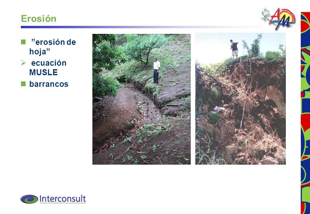 30 Erosión erosión de hoja ecuación MUSLE barrancos
