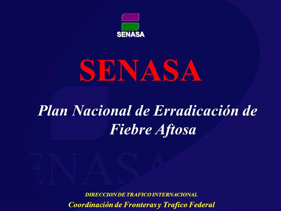 SENASA SENASA Plan Nacional de Erradicación de Fiebre Aftosa DIRECCION DE TRAFICO INTERNACIONAL Coordinación de Fronteras y Trafico Federal