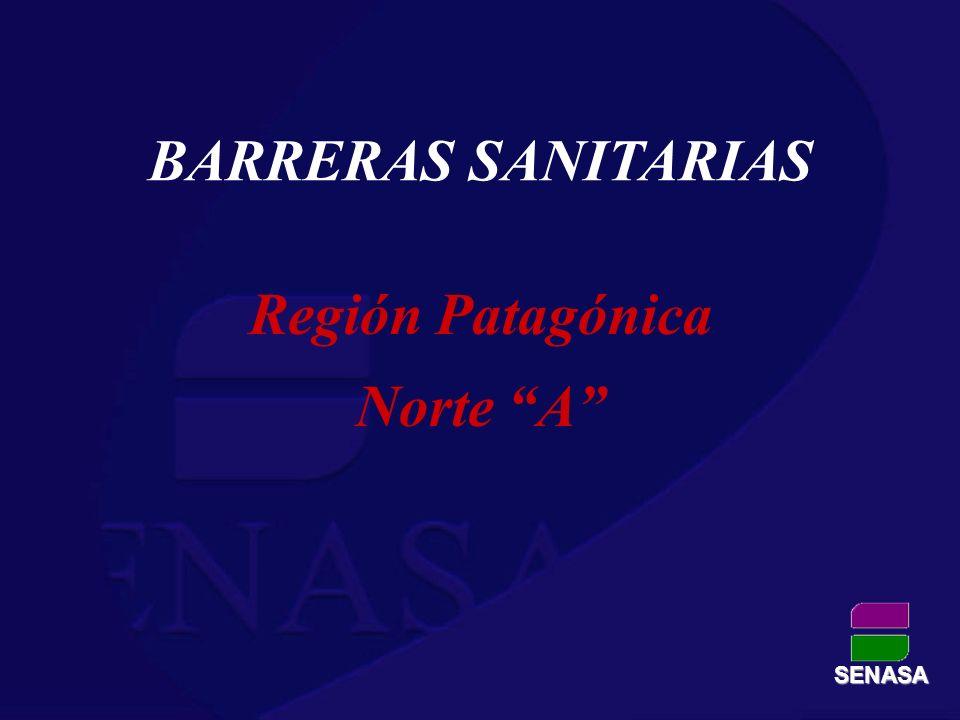 SENASA BARRERAS SANITARIAS Región Patagónica Norte A