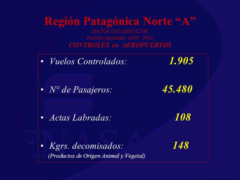 Región Patagónica Norte A DATOS ESTADÍSTICOS Periodo reportado: AÑO 2002 CONTROLES en AEROPUERTOS Vuelos Controlados: 1.905 N° de Pasajeros: 45.480 Ac