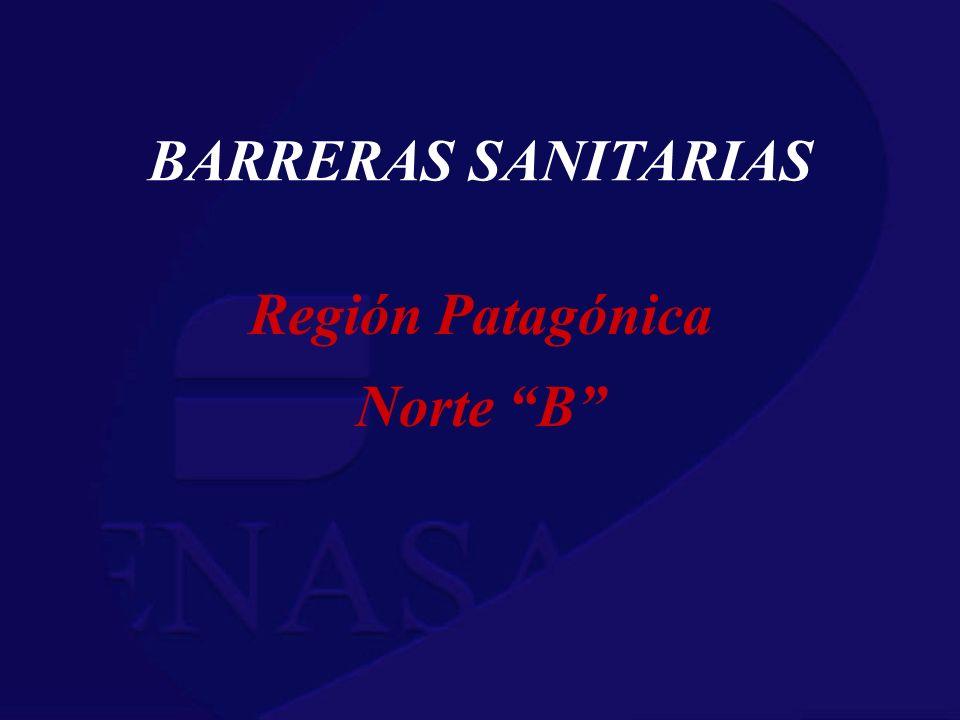 BARRERAS SANITARIAS Región Patagónica Norte B
