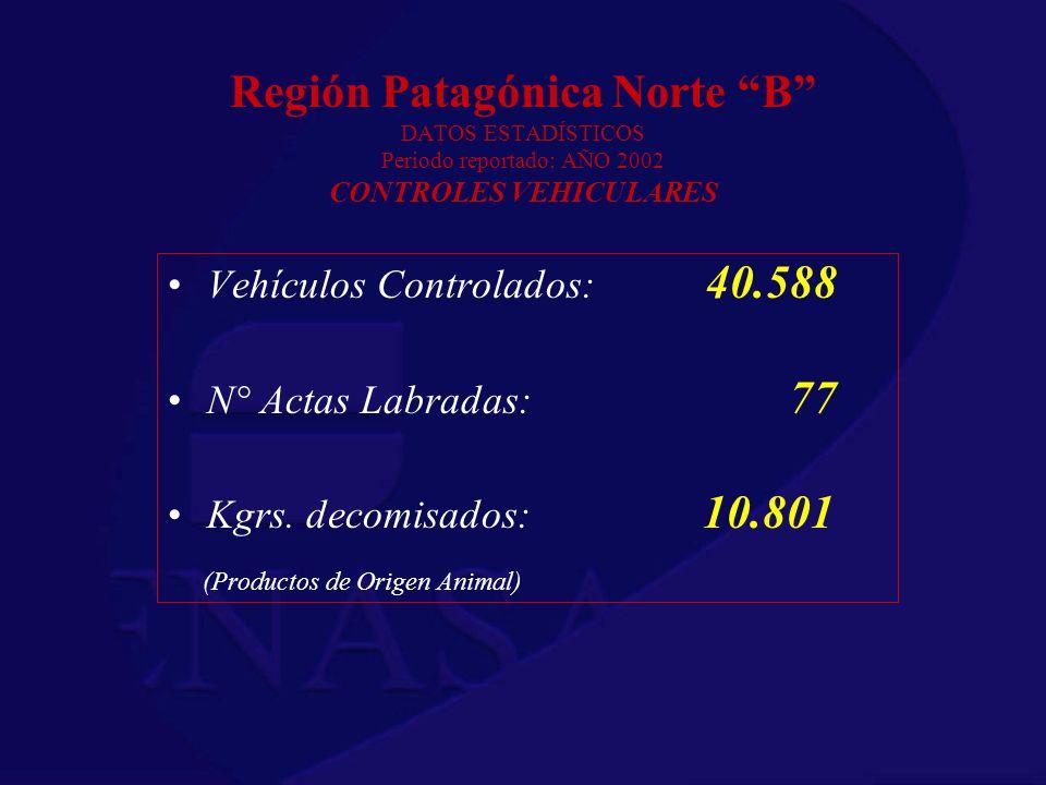 Región Patagónica Norte B DATOS ESTADÍSTICOS Periodo reportado: AÑO 2002 CONTROLES VEHICULARES Vehículos Controlados: 40.588 N° Actas Labradas: 77 Kgr