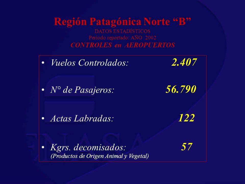 Región Patagónica Norte B DATOS ESTADÍSTICOS Periodo reportado: AÑO 2002 CONTROLES en AEROPUERTOS Vuelos Controlados: 2.407 N° de Pasajeros: 56.790 Ac