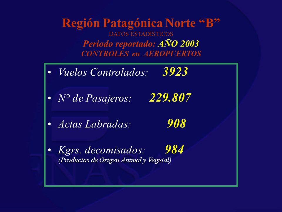 Región Patagónica Norte B DATOS ESTADÍSTICOS Periodo reportado: AÑO 2003 CONTROLES en AEROPUERTOS Vuelos Controlados: 3923 N° de Pasajeros: 229.807 Ac