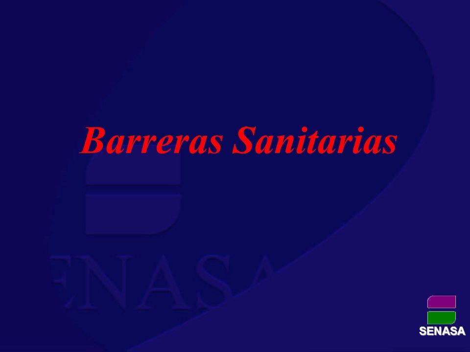 Barreras Sanitarias Coordinación- Supervisión y Control RECURSOS HUMANOS SENASA – Organismos bajo Convenio Profesionales: 7 Auxiliares técnicos: 72 17Auxiliares administrativos: 17