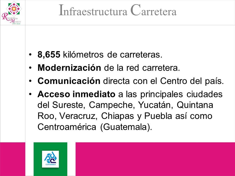 I nfraestructura C arretera 8,655 kilómetros de carreteras.
