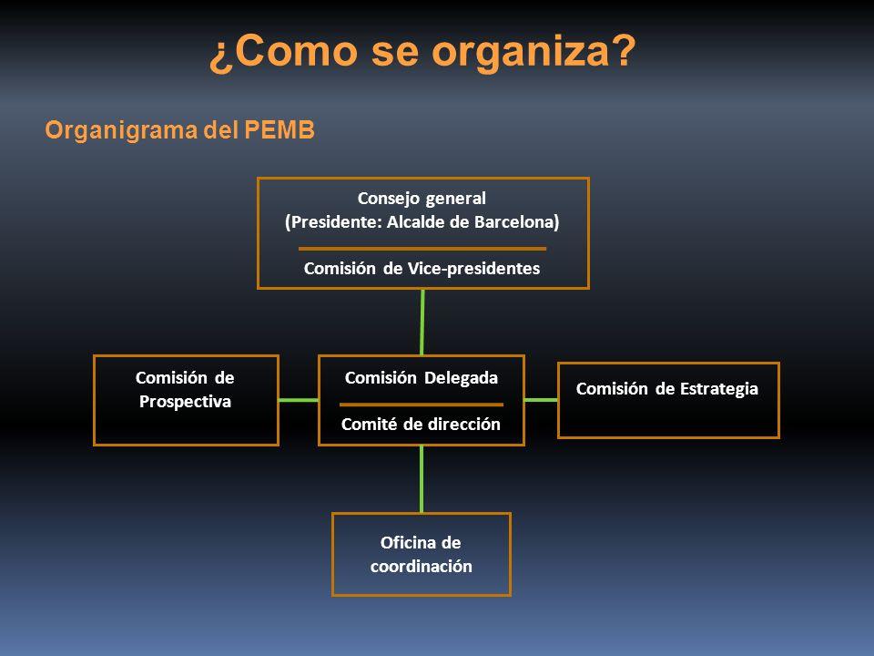 ¿Como se organiza? Comisión de Prospectiva Oficina de coordinación Comisión de Estrategia Comisión Delegada Comité de dirección Consejo general (Presi