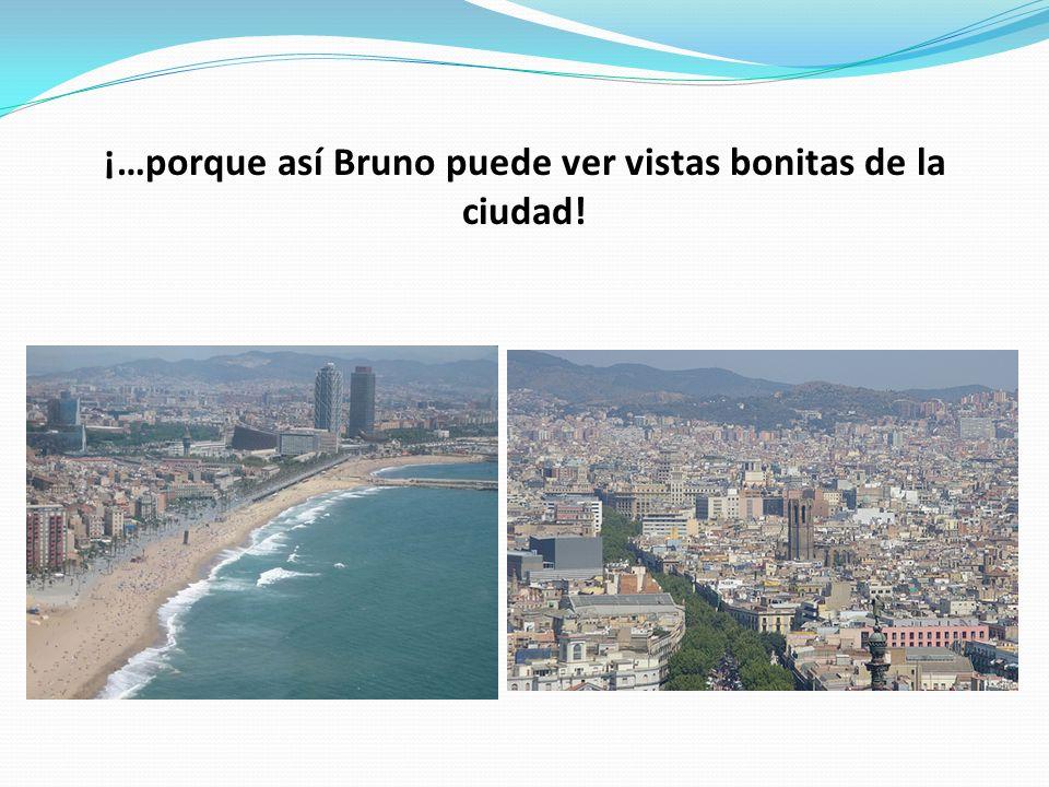 ¡…porque así Bruno puede ver vistas bonitas de la ciudad!
