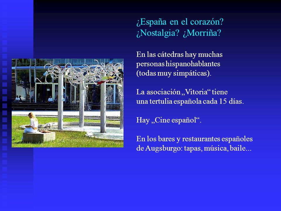 ¿España en el corazón? ¿Nostalgia? ¿Morriña? En las cátedras hay muchas personas hispanohablantes (todas muy simpáticas). La asociación Vitoria tiene