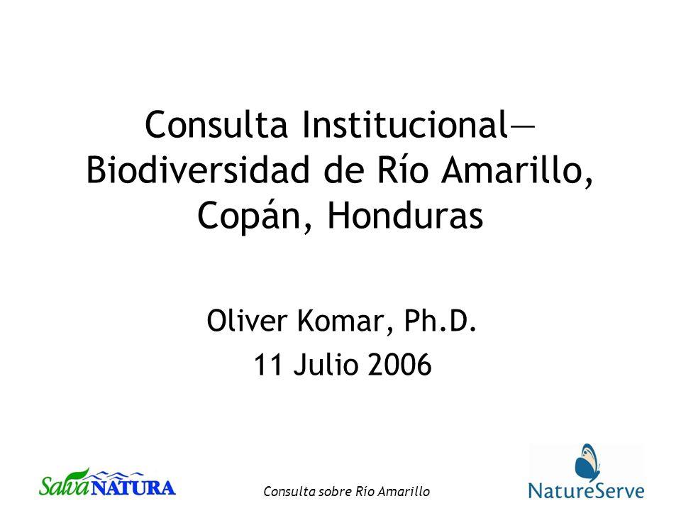 Consulta sobre Río Amarillo Consulta Institucional Biodiversidad de Río Amarillo, Copán, Honduras Oliver Komar, Ph.D.